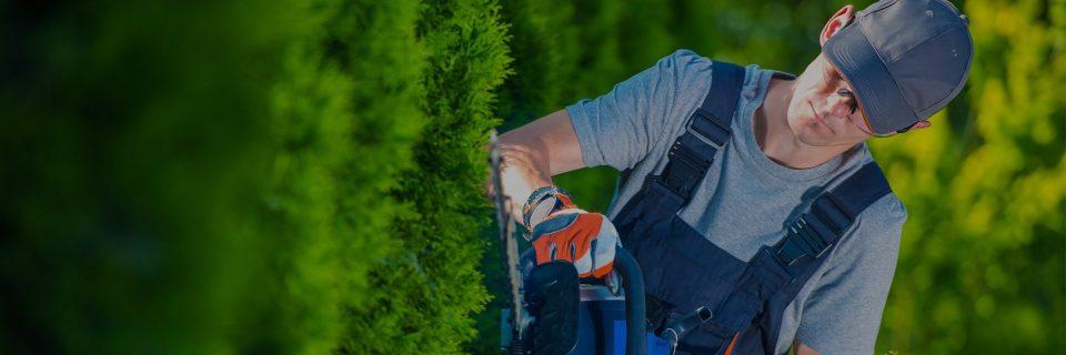 Efectuamos serviço de jardinagem desde 1997
